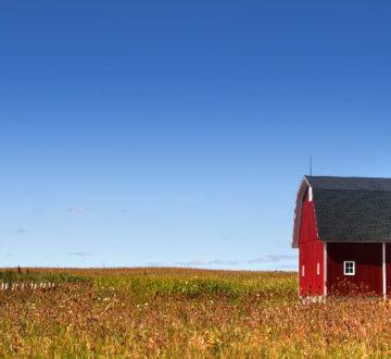 A barn in a field