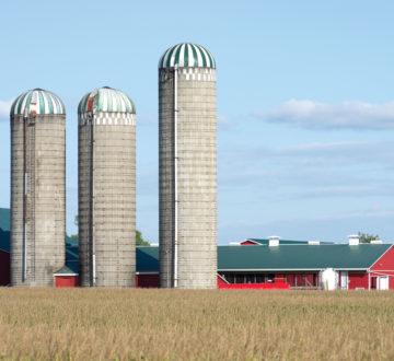 Canadian dairy farm