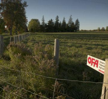 OFA member gate sign - farm scene