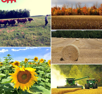 Proud to Farm Photo Contest Collage