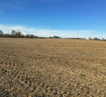 Ontario farm field