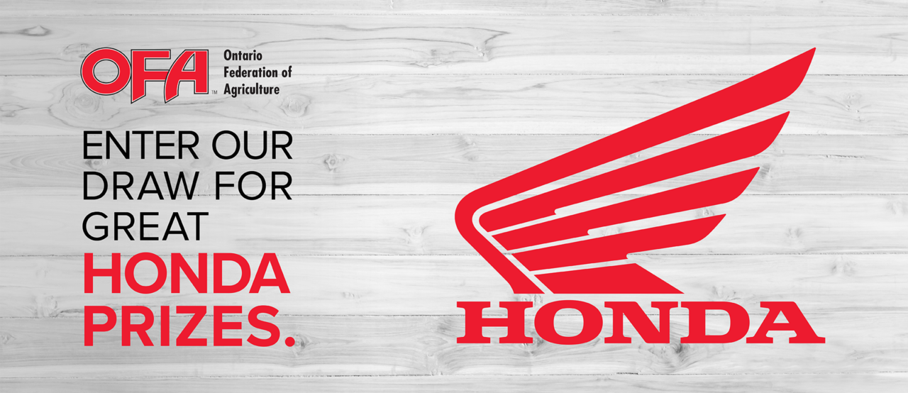 Win with OFA and Honda