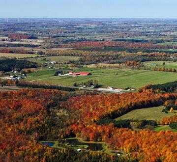 Rural Ontario landscape