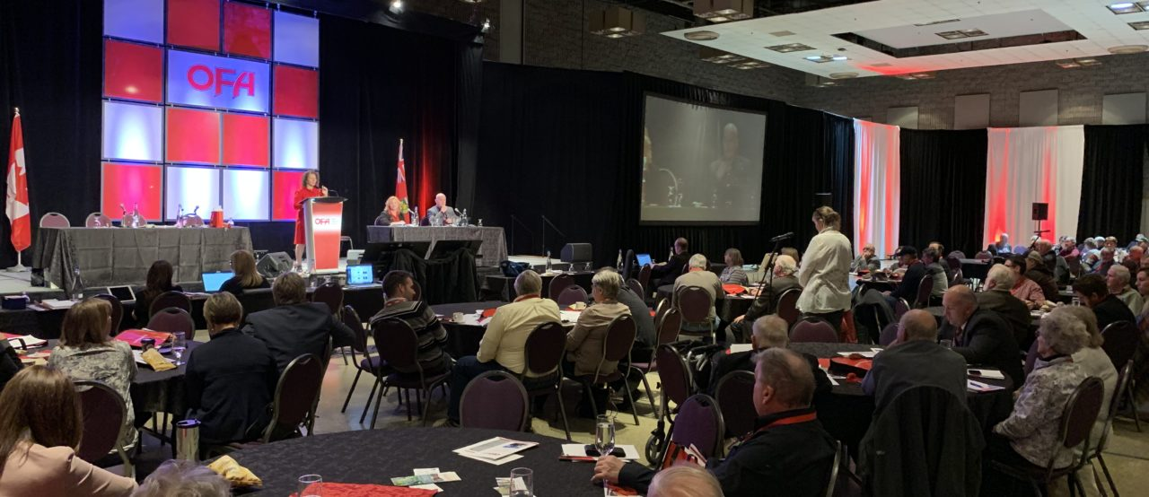 OFA annual general meeting brings together grassroots discussions