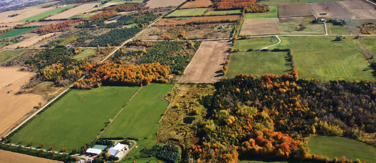 The time is now to support Ontario's agri-food system with workable solutions