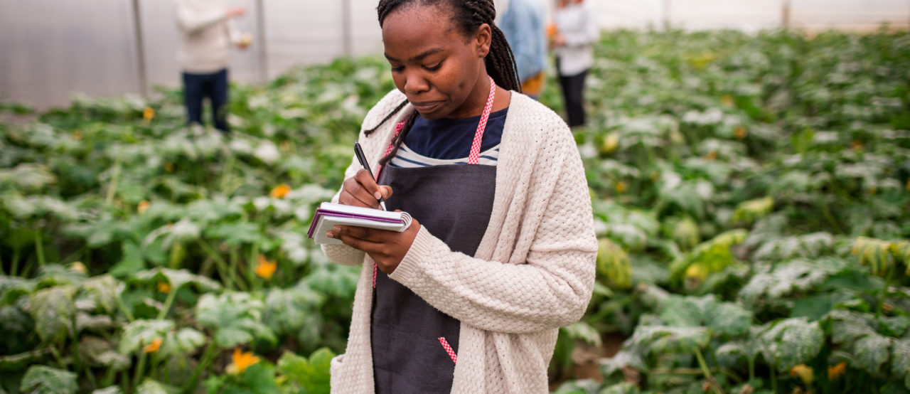Connecting job seekers to opportunities in agri-food through Feeding Your Future initiative