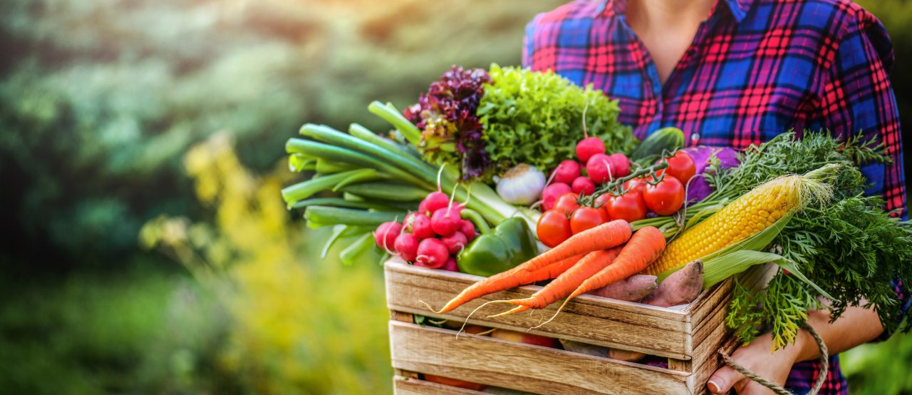 Always in Season project highlights opportunities to support agriculture and local food