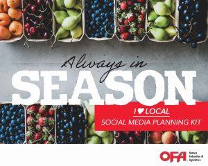 ♥ Local Social Media Planning Kit